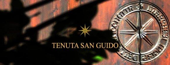 Wine Tasting Tenuta S.Guido Sassicaia ( Tuscany )